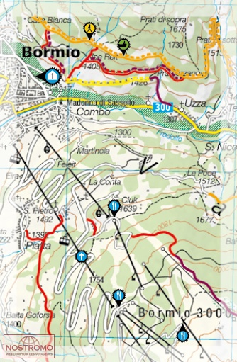 Bormio Italy Map.Livigno Bormio Biking Map Nostromoweb